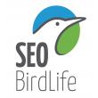 SEO/BirdlLife